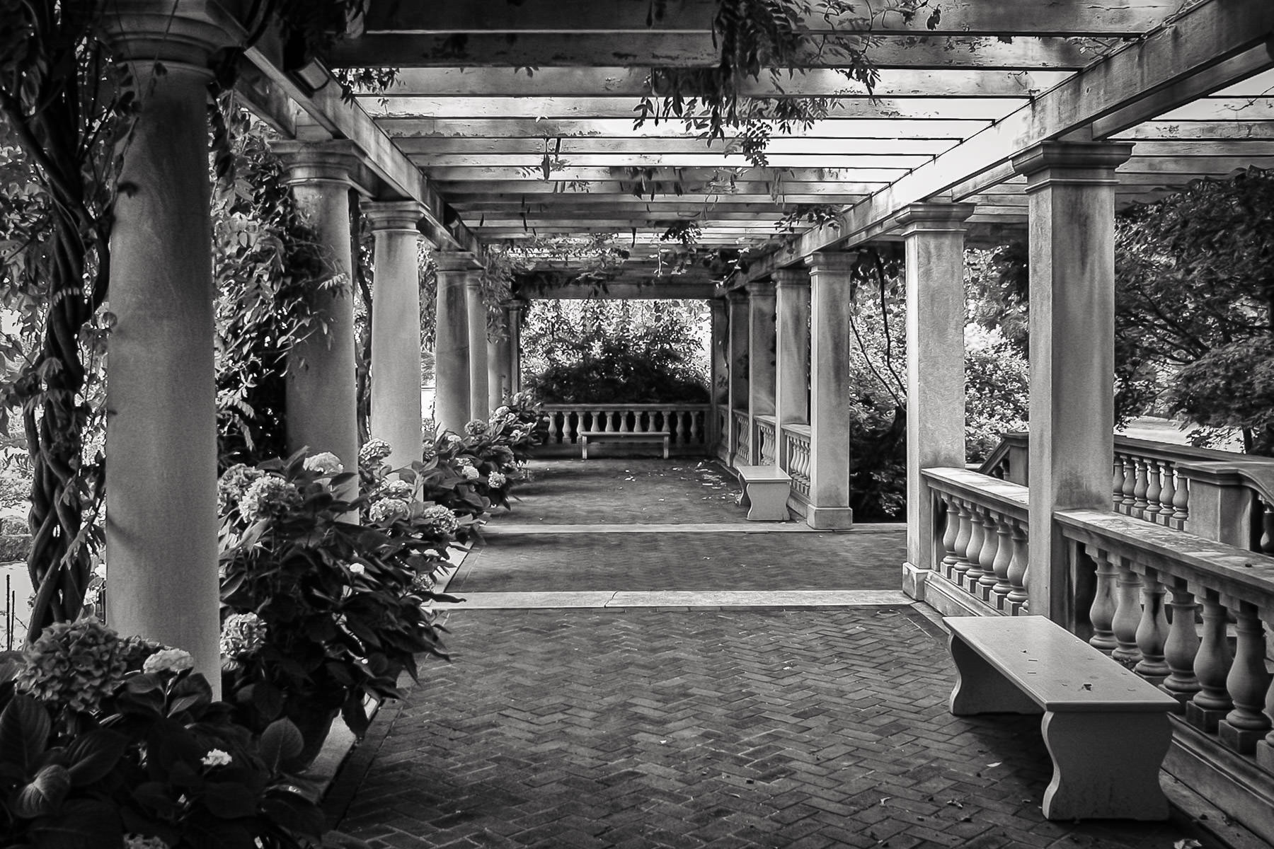 The pergola at the George Eastman House in Rochester, NY.
