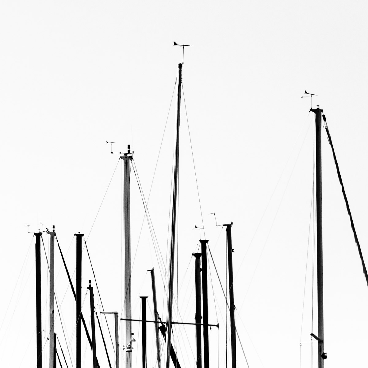 Sailboat masts at Joe Pool Lake in Cedar Hill, Texas.
