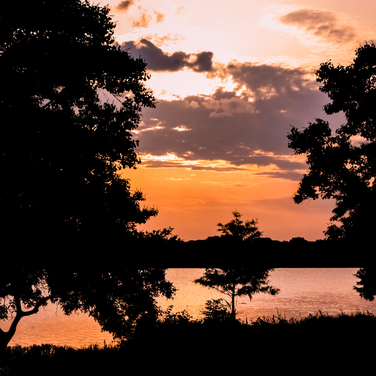 The last light of the summer Sun as it sets over White Rock Lake, Dallas.