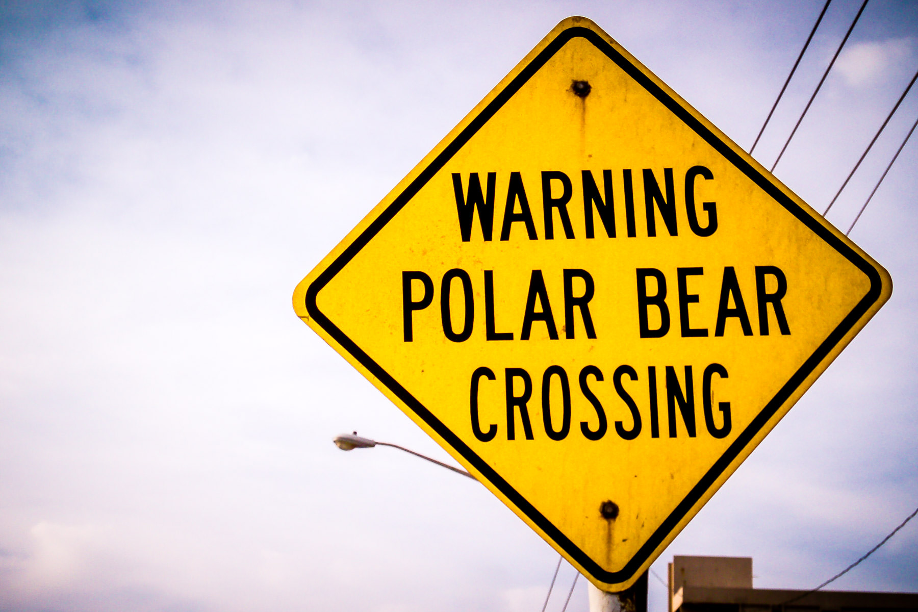 An out-of-place street sign spotted in South Padre Island, Texas.