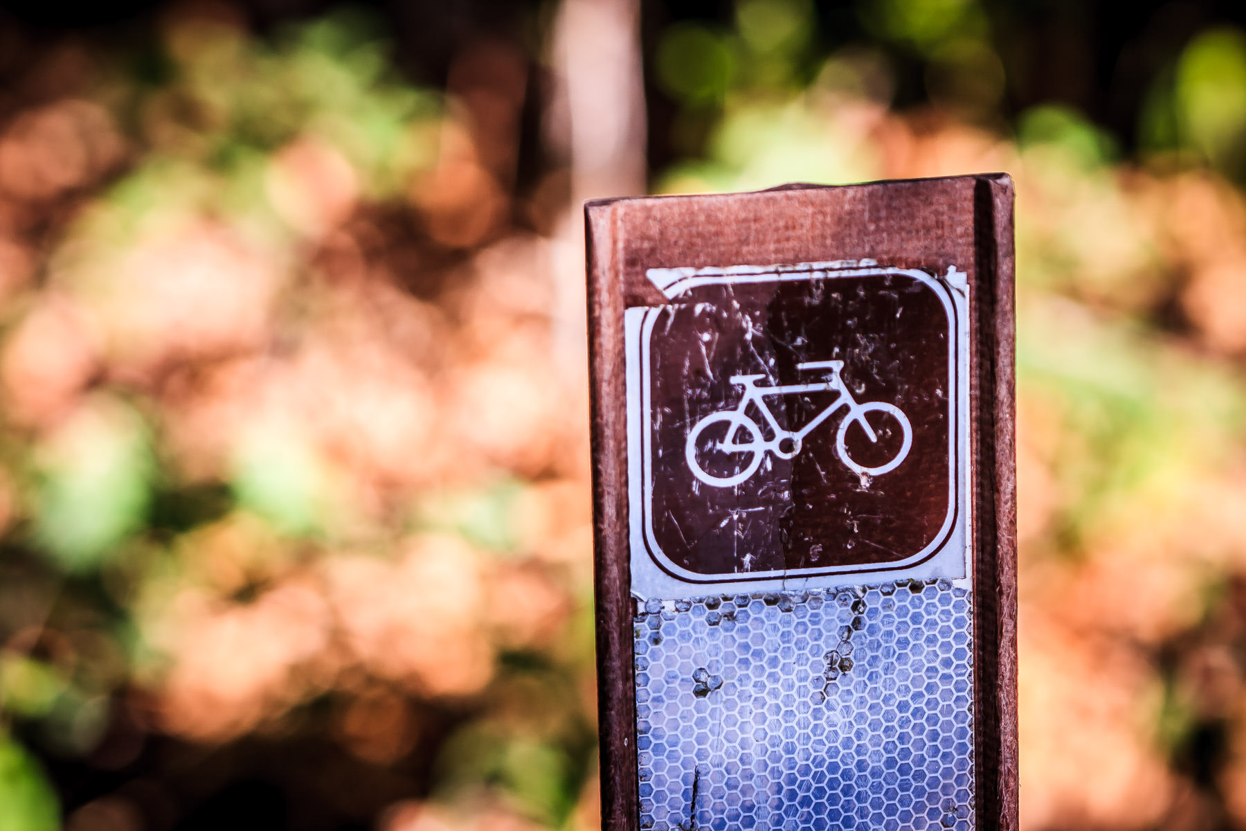 A sign marking a bike path at Lake Ray Roberts State Park, Texas.
