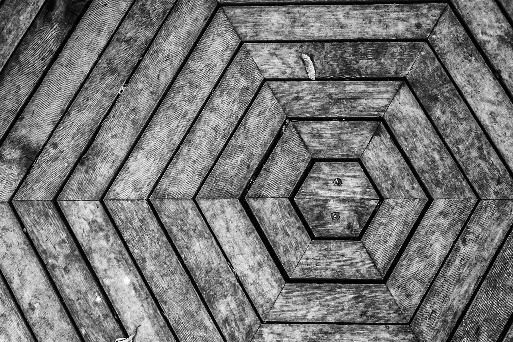 The pattern of wood making up the floor of a gazebo at the Fort Worth, Texas' Botanic Gardens vaguely reminded me of the TV show Lost's Dharma Initiative's logo.