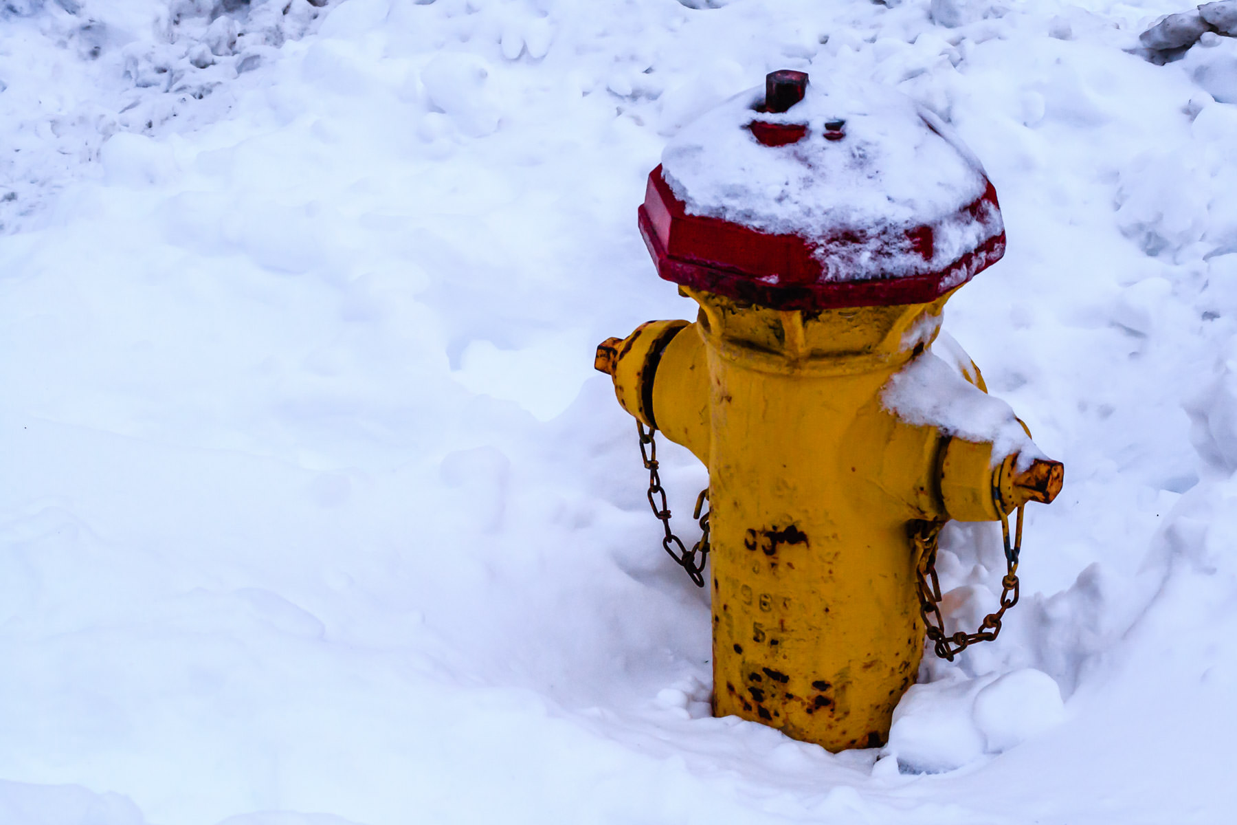 A snow-covered fire hydrant in Downtown Salt Lake City, Utah.