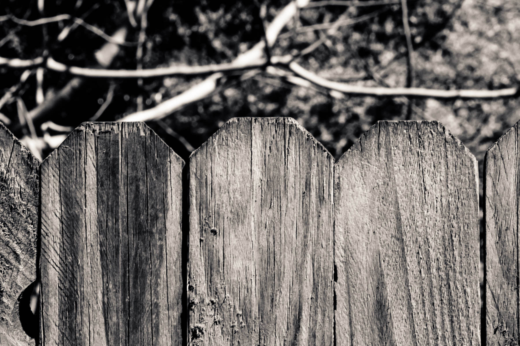 The tops of planks making up a wooden fence, somewhere in Tyler, Texas.