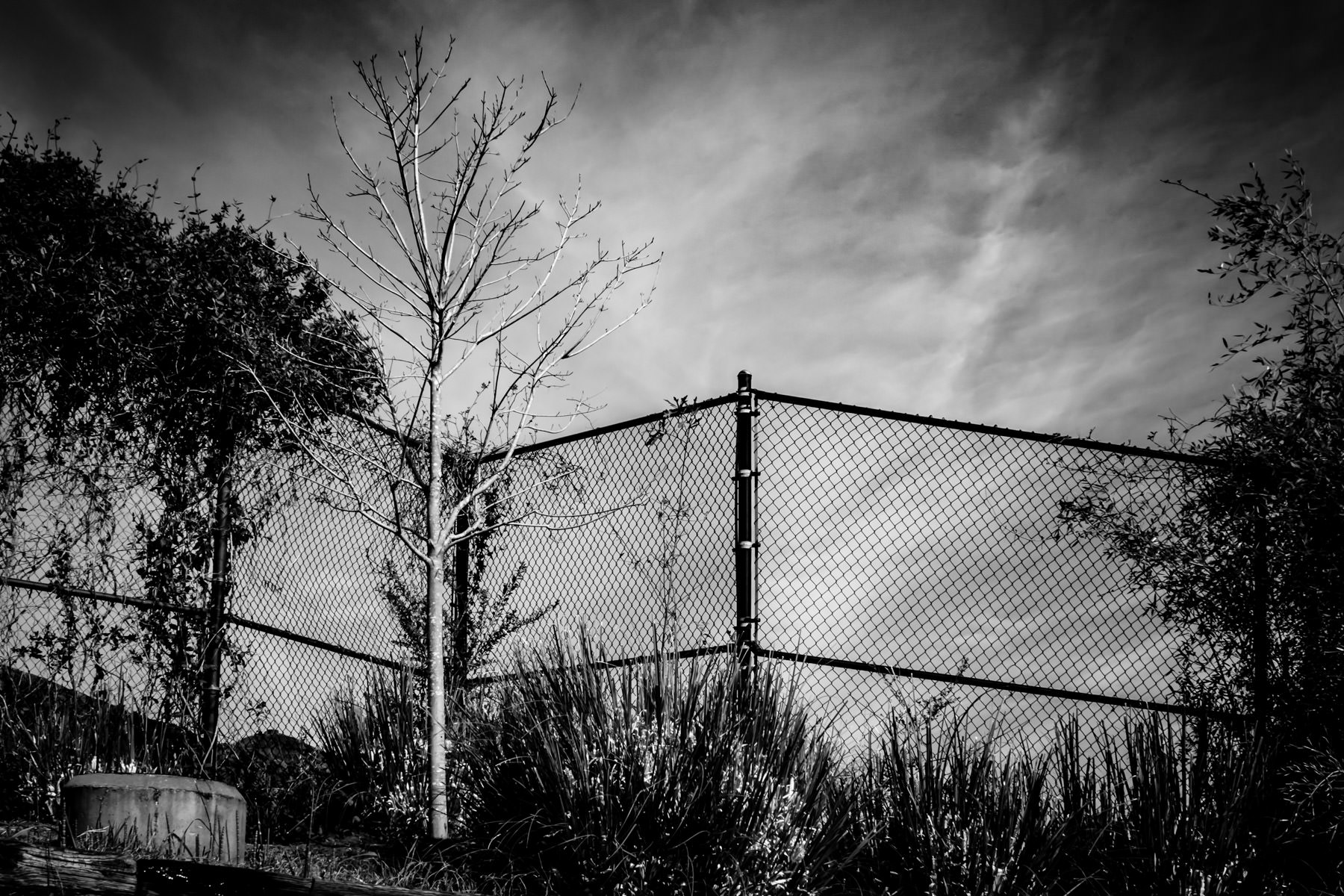 A fence at Caldwell Zoo, Tyler, Texas.