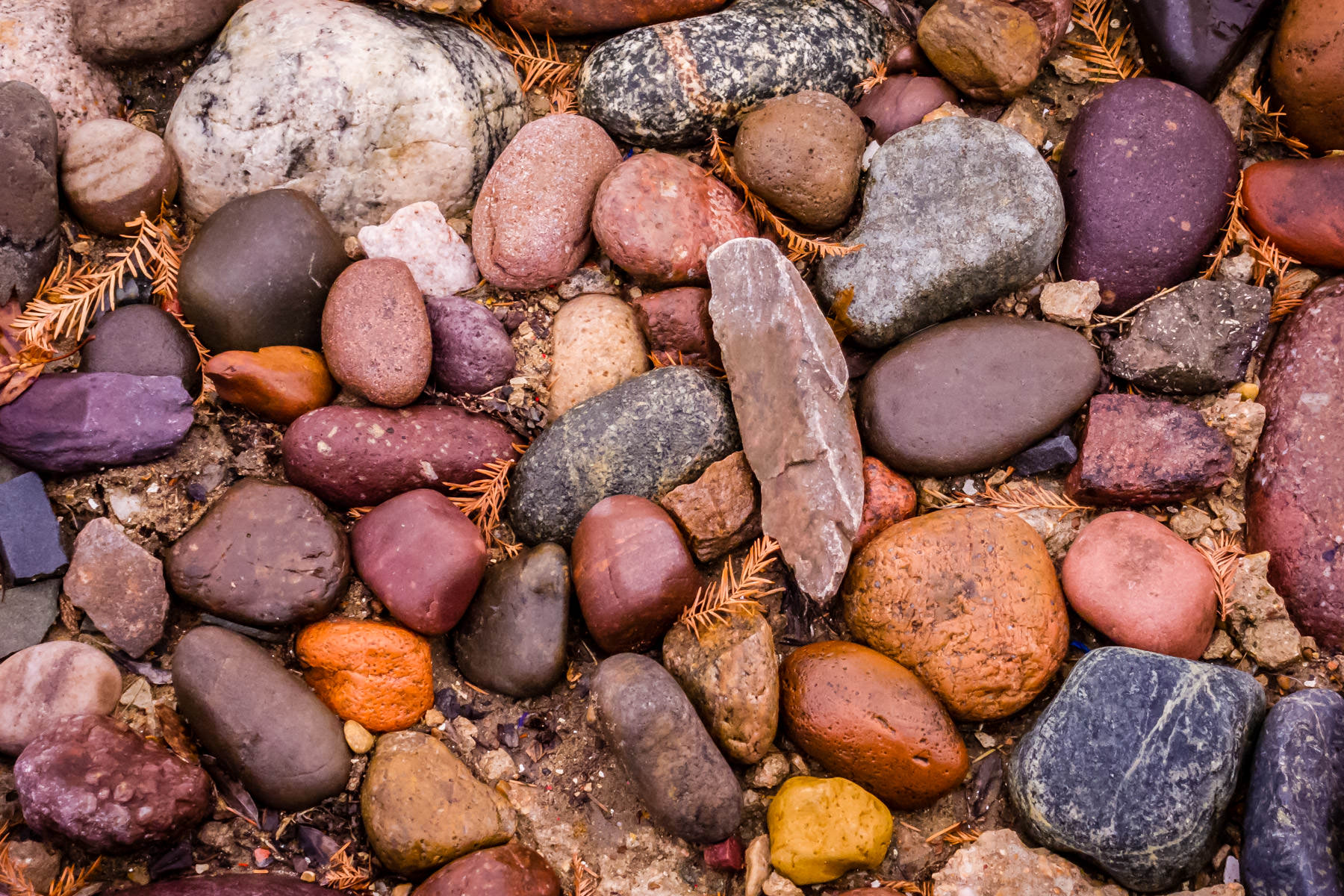 Colorful stones spotted in Plano, Texas.