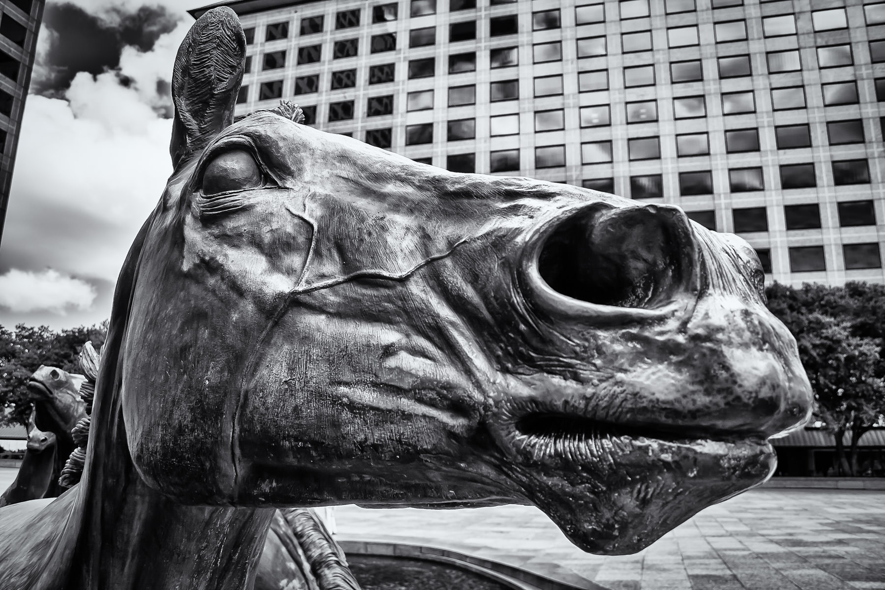 Detail of one of the constituent sculptures of The Mustangs at Las Colinas, Irving, Texas.
