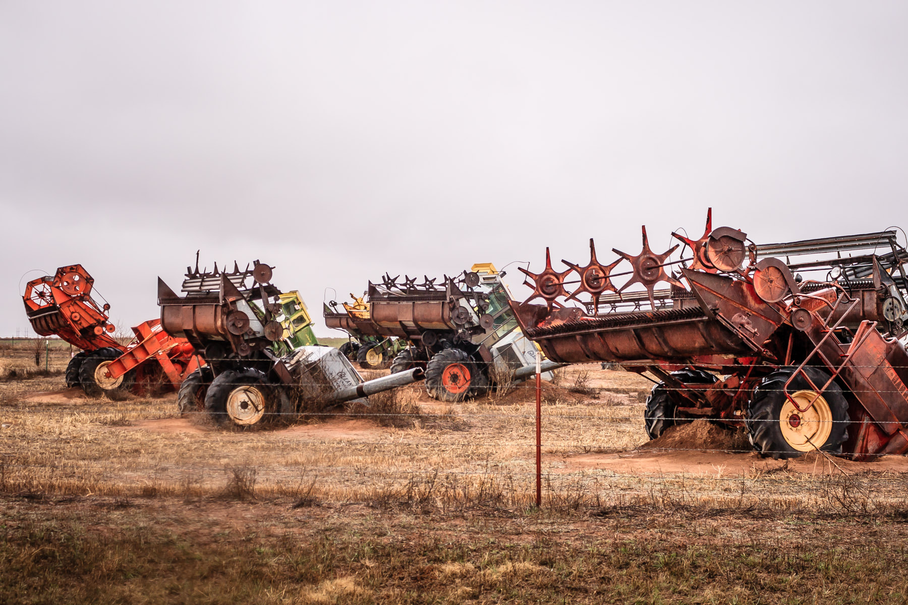 "A portion of Combine City—over a dozen combine harvesters buried ""nose-first"" in a field—outside of Canyon, Texas."