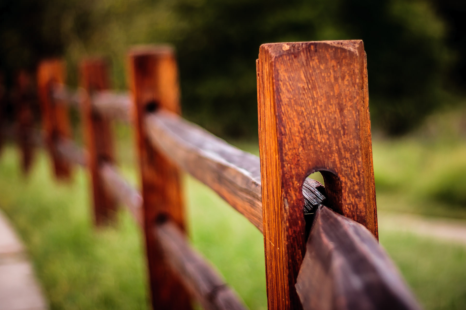 A fence at Arbor Hills Nature Preserve, Plano, Texas.