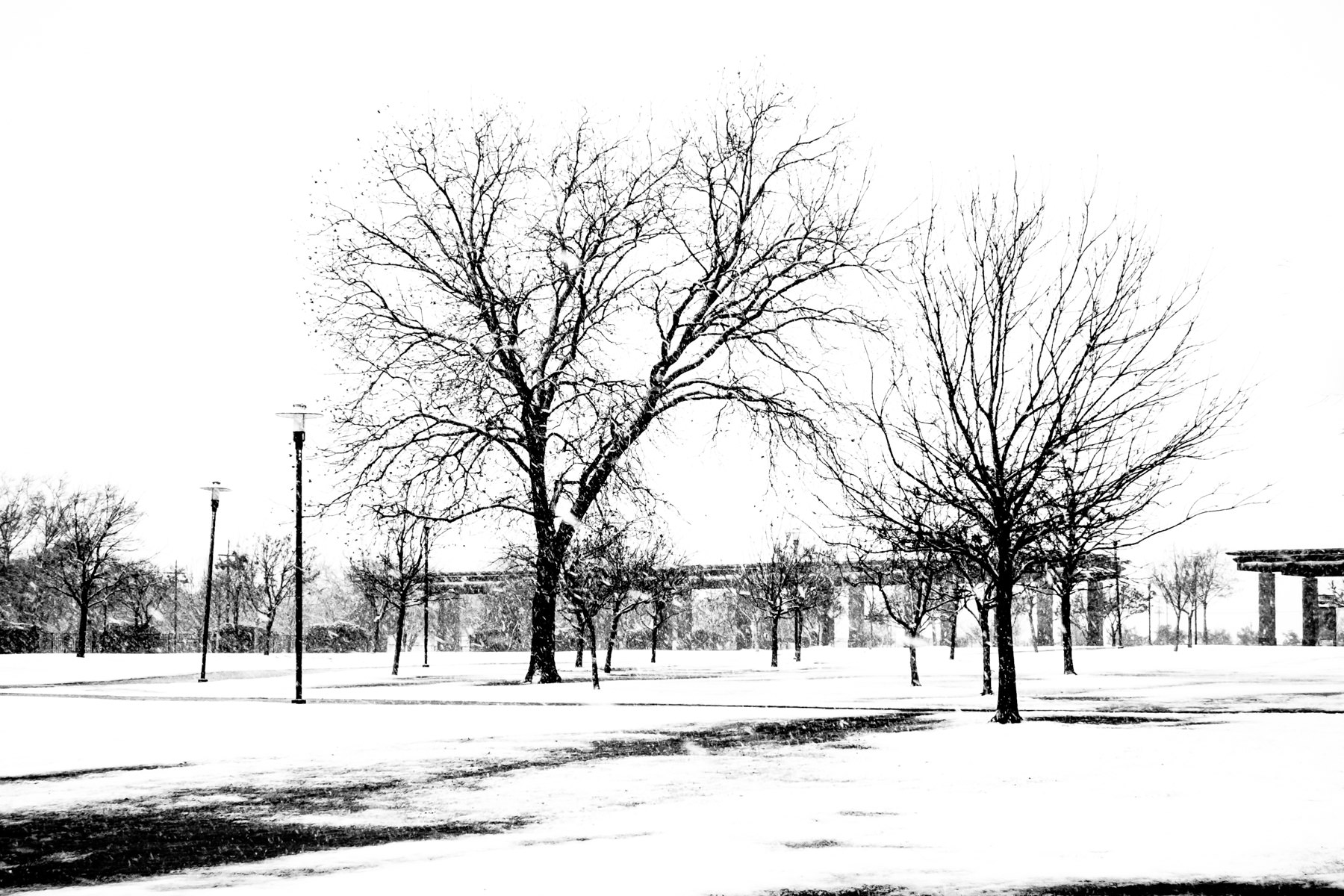 A cold, snowy day at Addison Circle Park, Addison, Texas.