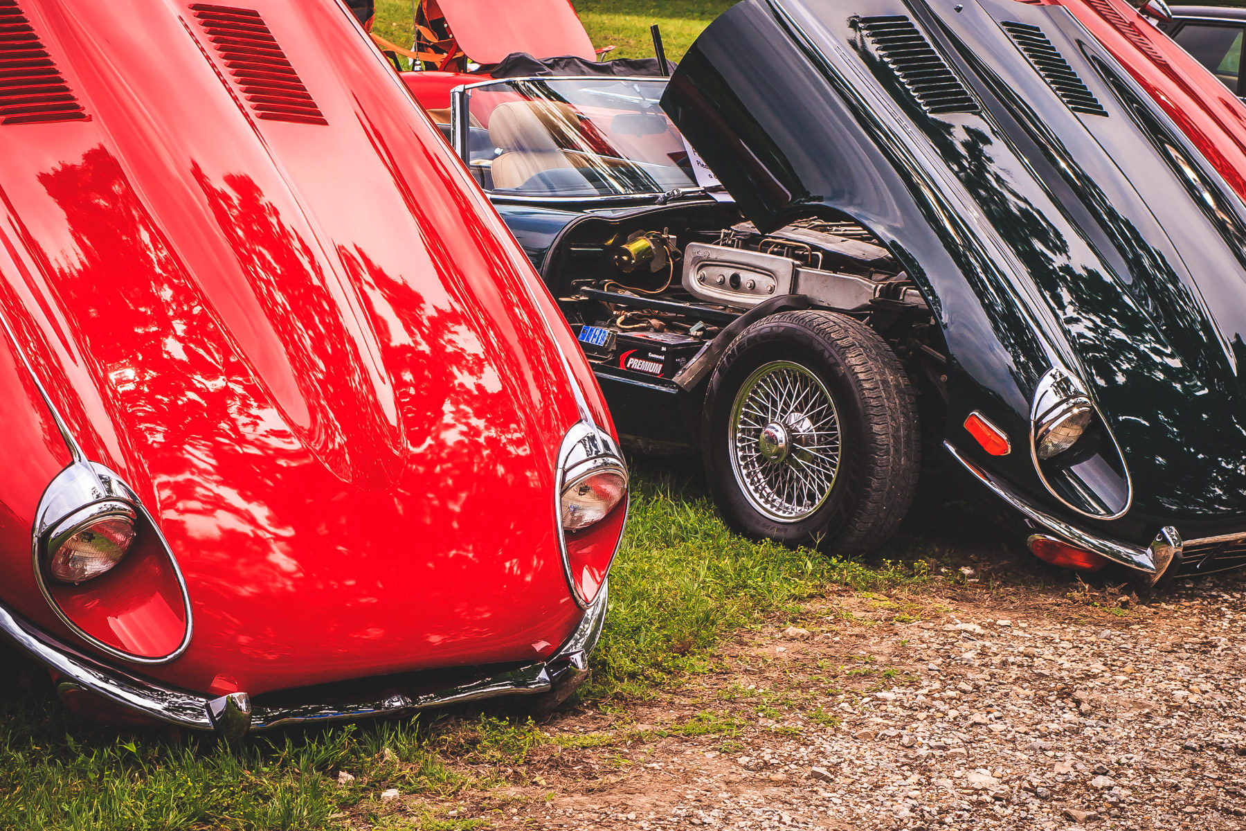Jaguar E-Types with their bonnets open at Dallas' All British and European Car Day.