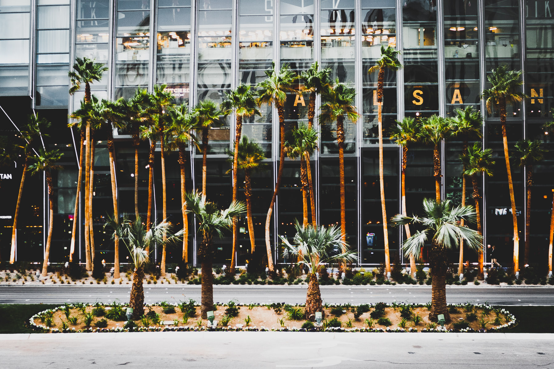 Palm trees along Las Vegas Boulevard in front of the Cosmopolitan Las Vegas Hotel & Casino's glass and steel-encased lobby.