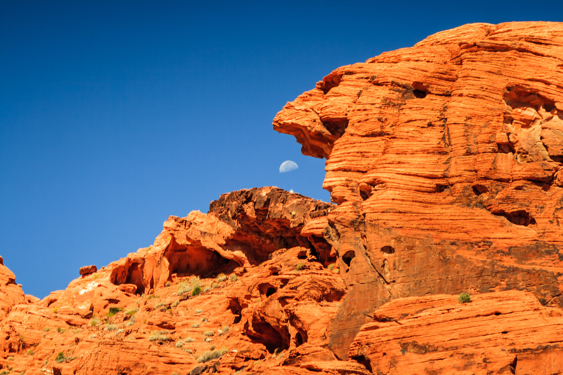 Rock monoliths seem to be ready to eat the moon at the Valley of Fire, Nevada.