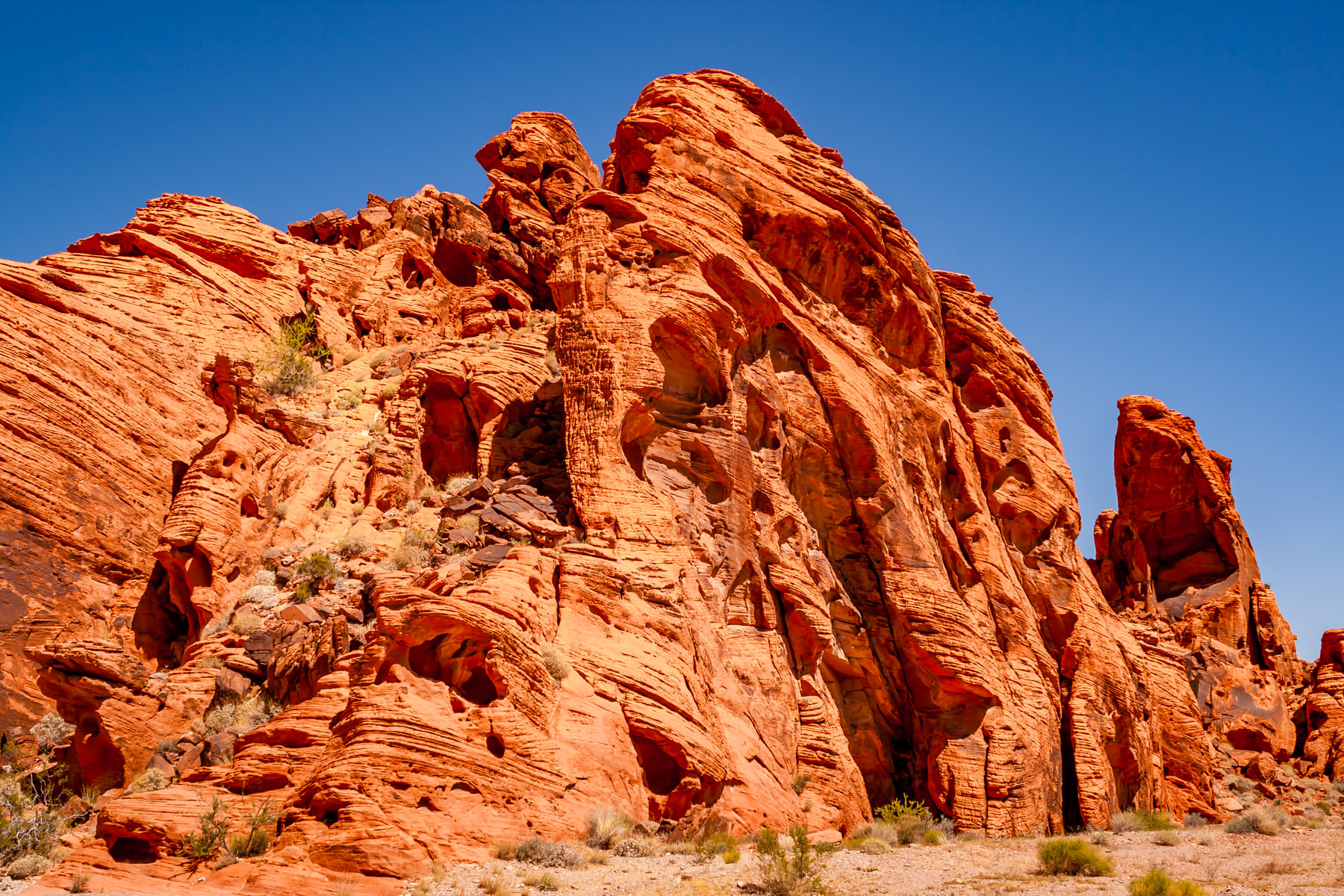 A desert landscape from Valley of Fire, Nevada.
