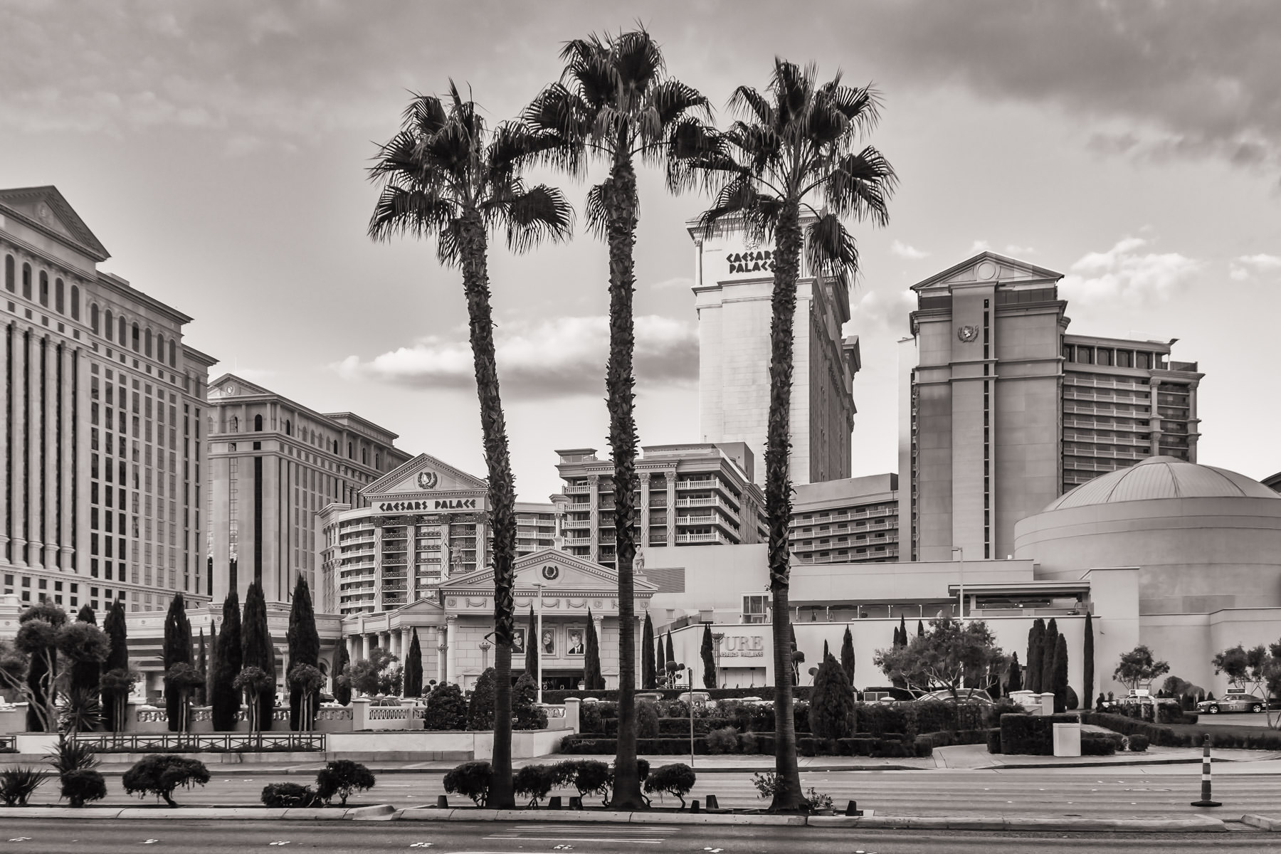 Three palm trees stand guard in front of Caesars Palace, Las Vegas.