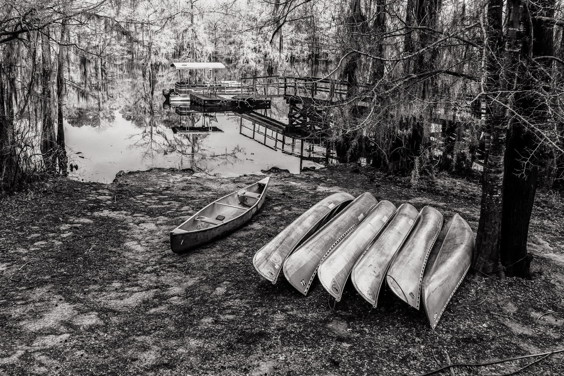 Canoes ashore at Caddo Lake State Park, Texas.