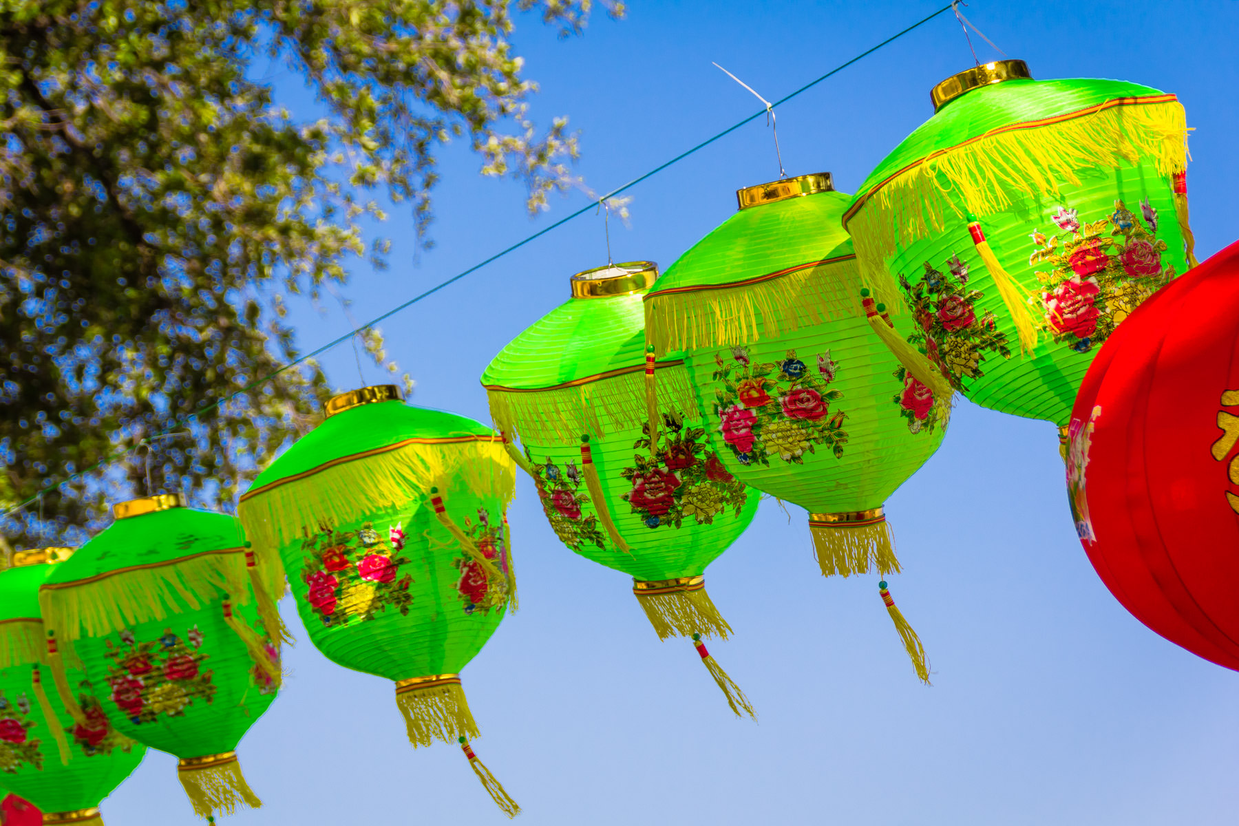 Chinese lanterns at the DFW Dragon Boat Festival, Las Colinas, Irving, Texas.