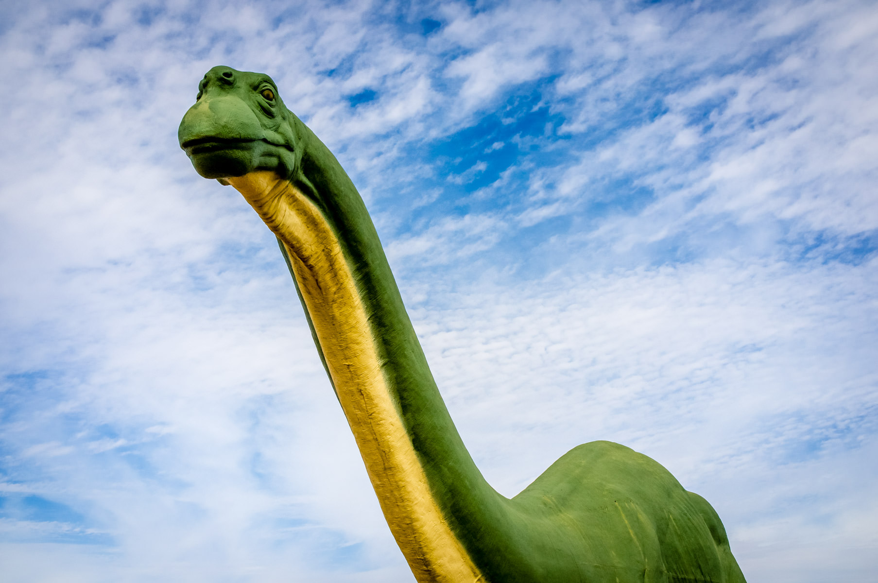 This 70-foot-long statue of a brontosaurus was originally built for Sinclair Dinoland, a Sinclair Oil Company exhibit at the 1964-65 New York World's Fair, but now resides at Texas' Dinosaur Valley State Park.
