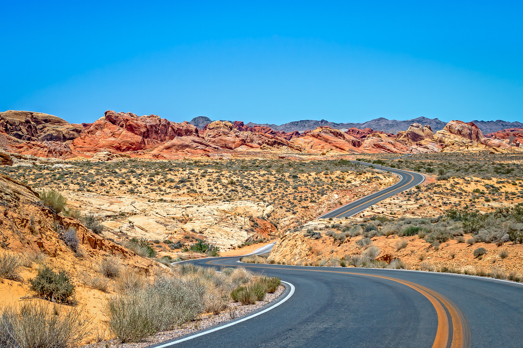 A road winds its way through Nevada's Valley of Fire.