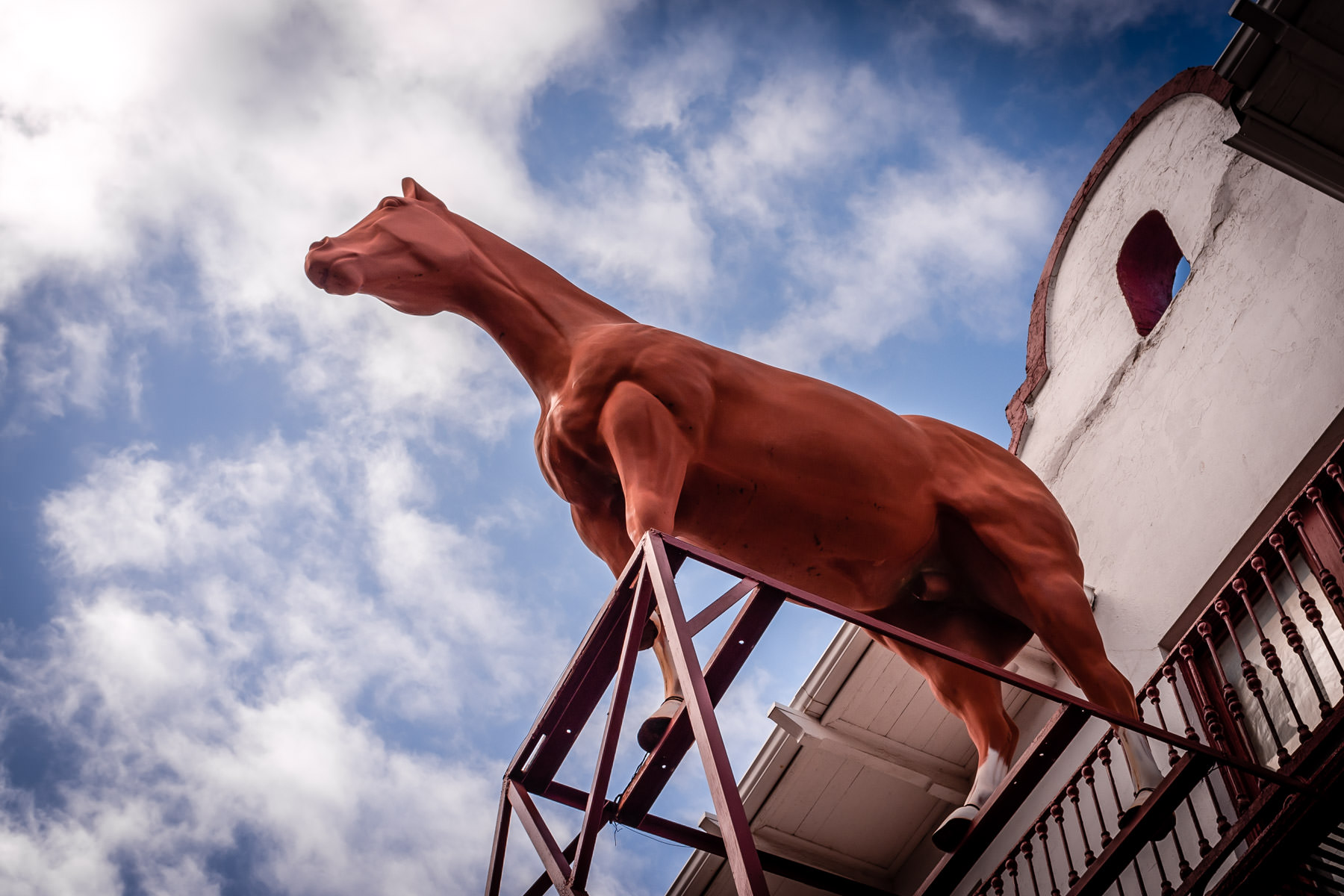 A giant fiberglass horse atop a building in Fort Worth, Texas' Historic Stockyards.