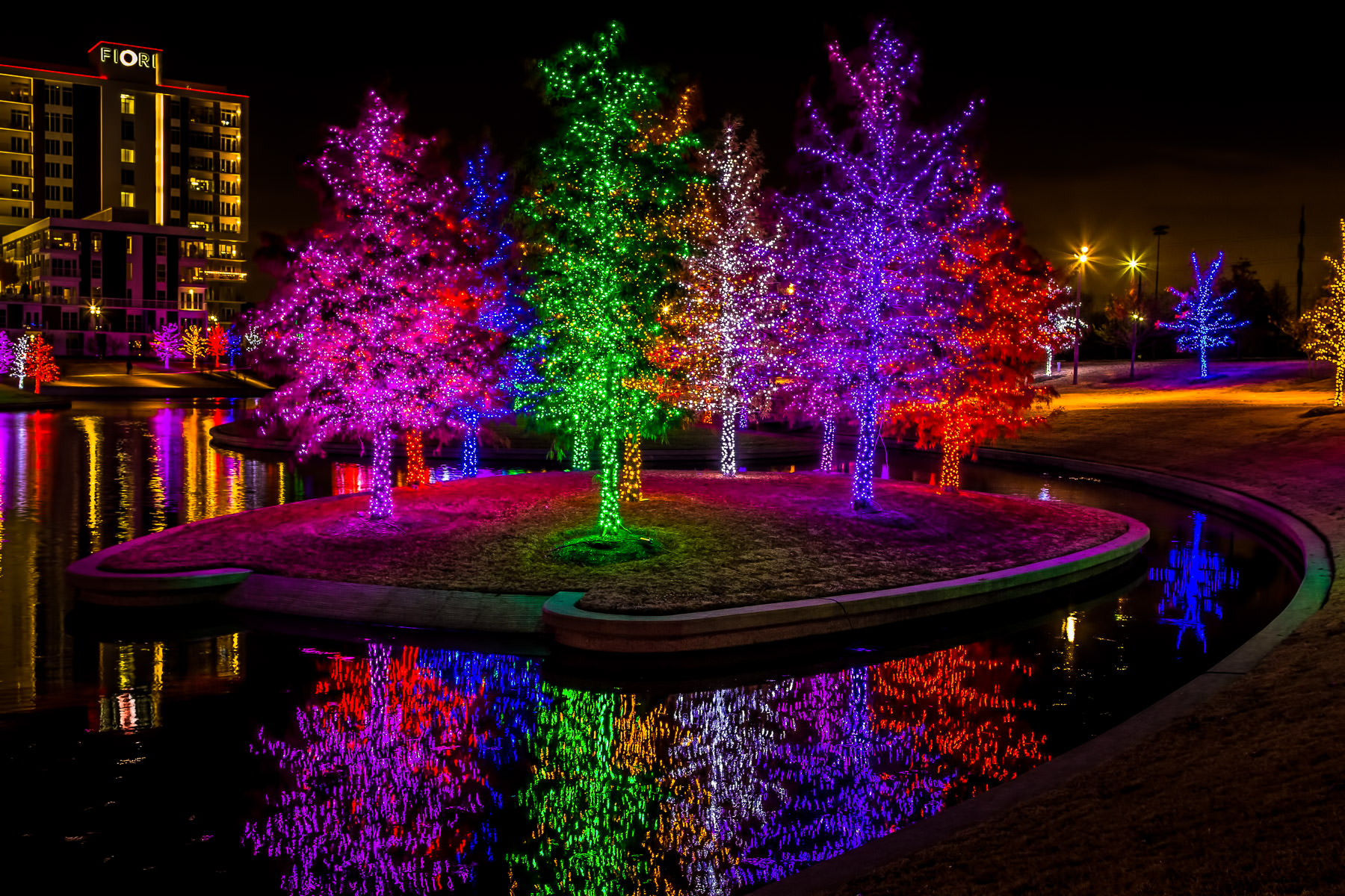 Trees in Addison, Texas' Vitruvian Park decorated with multi-colored lights for the holidays.