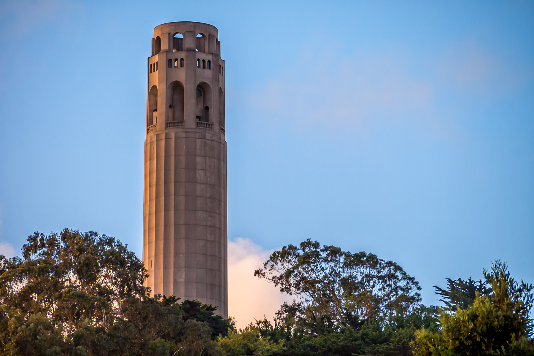 San Francisco's 210-foot-tall Coit Tower rises above the surrounding trees atop Telegraph Hill.