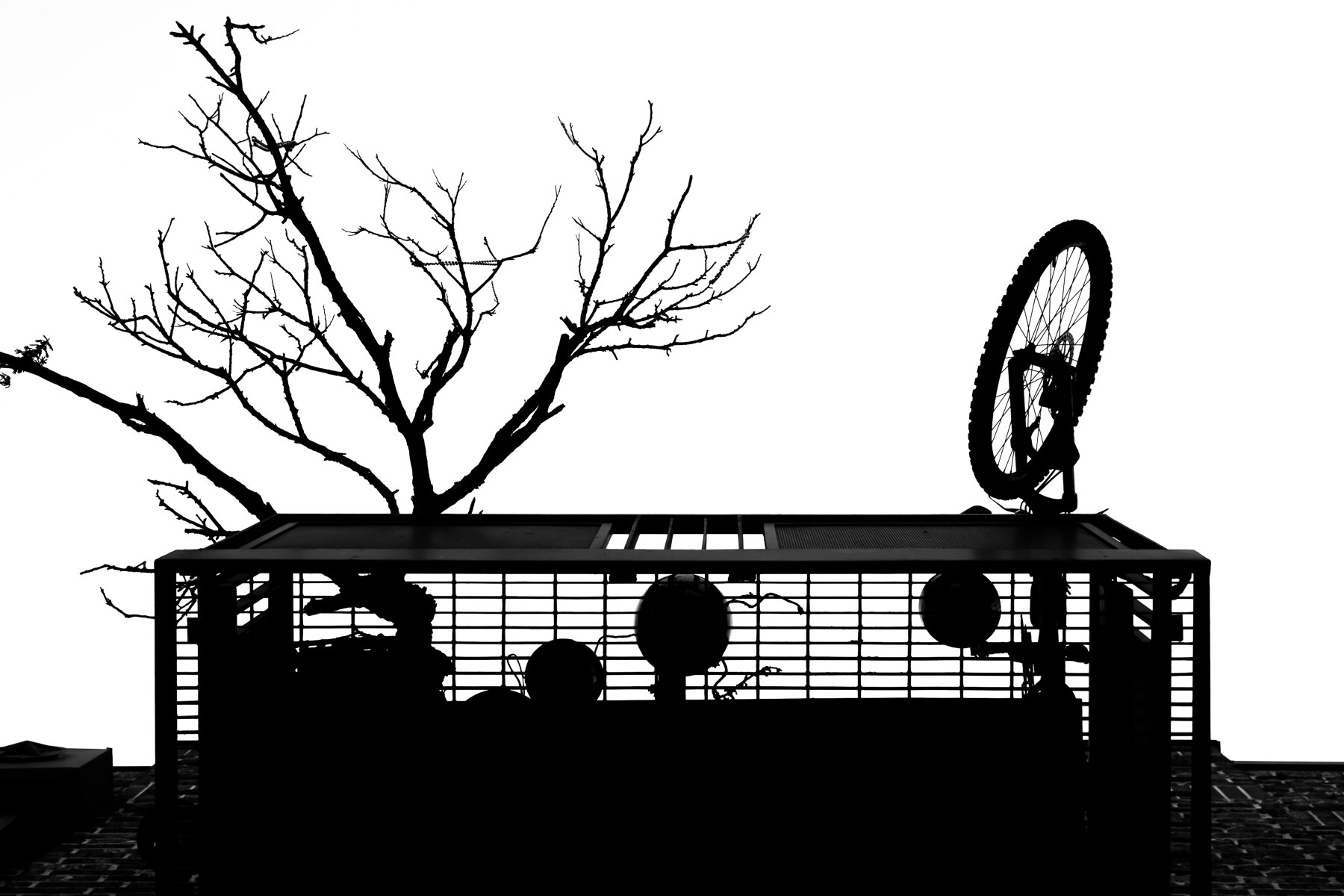 The silhouettes of a bicycle and a small tree on a balcony at a Downtown Plano, Texas, apartment building.