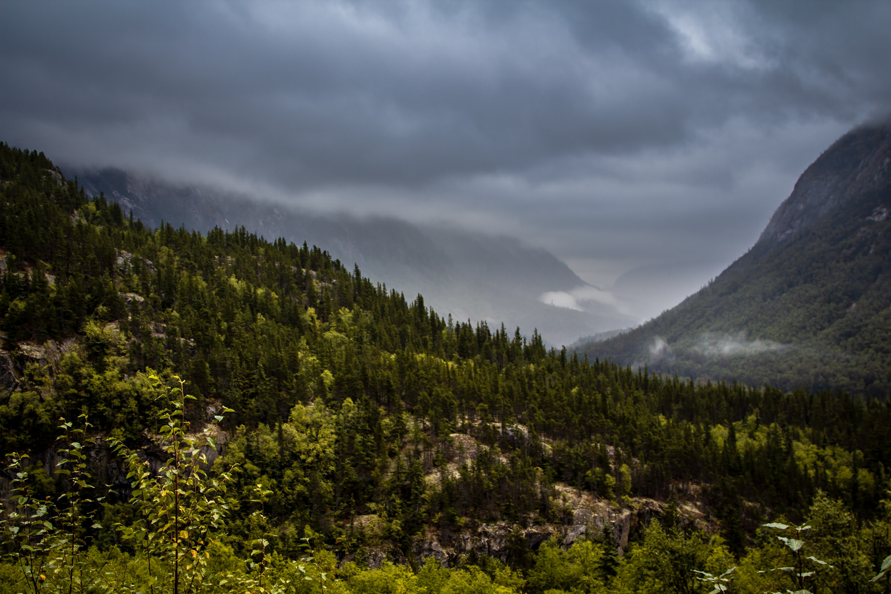 A foggy valley among the mountains just northeast of Skagway, Alaska.
