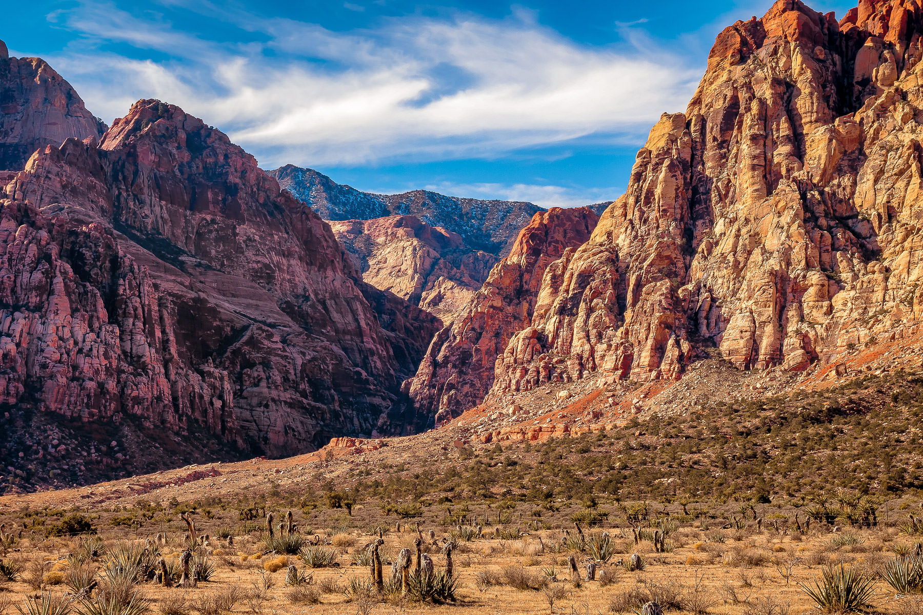 Rugged landscape rises from the desert floor in Nevada's Red Rock Canyon.