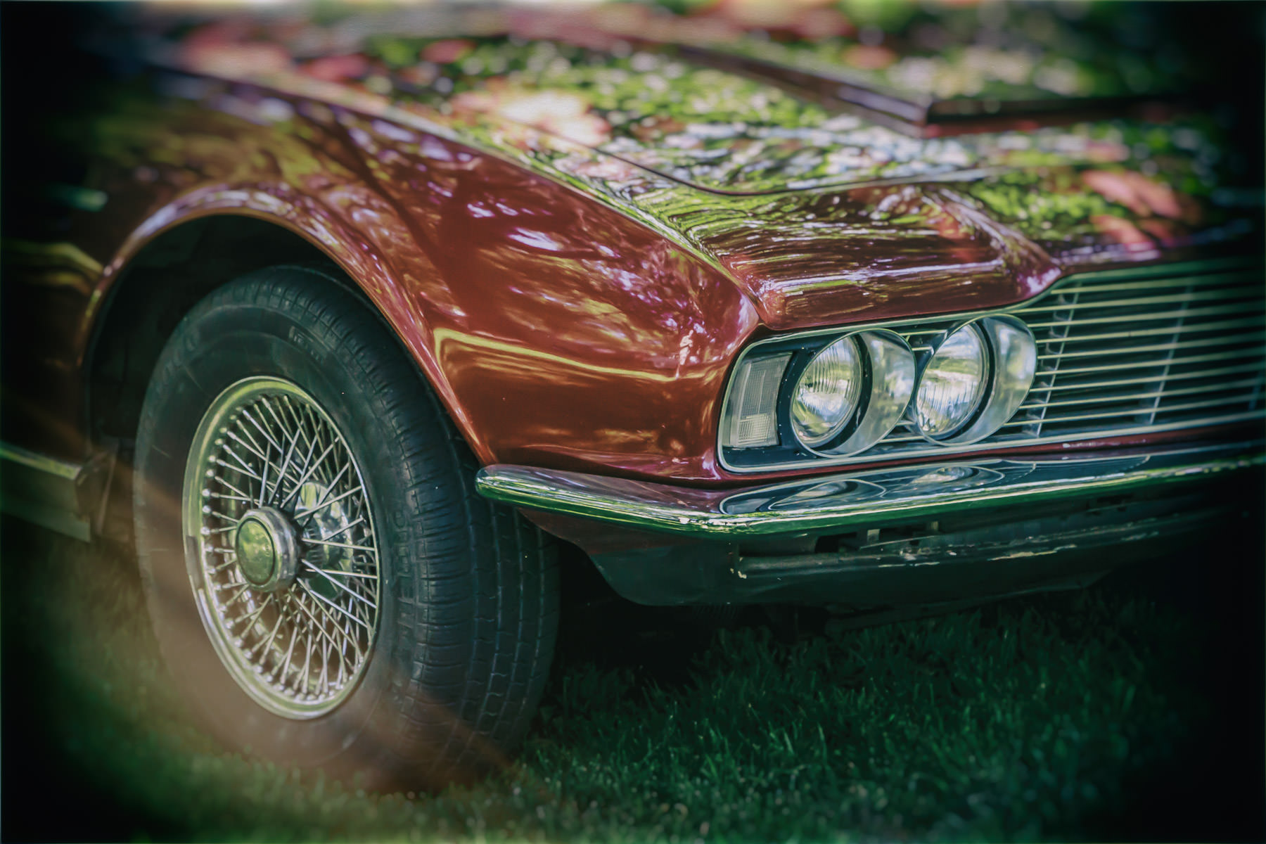 Detail of a classic Aston Martin DBS at Dallas' Autos in the Park event at the Cooper Institute.