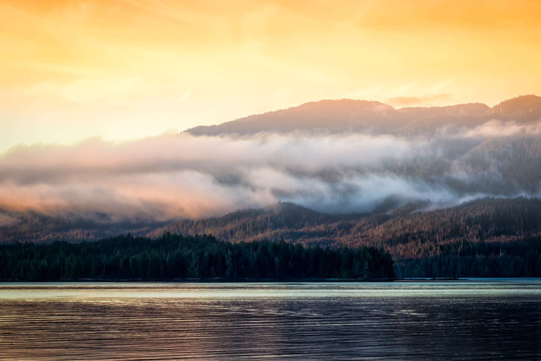 Morning fog envelops Gravina Island, across the Tongass Narrows from Ketchikan, Alaska,