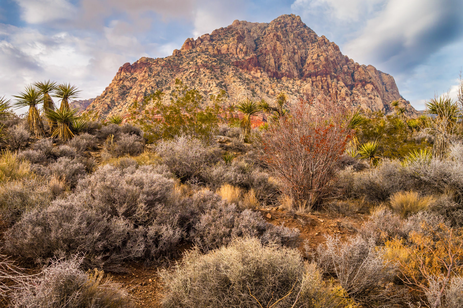 Desert brush surrounds a rocky, mountainous outcropping at Spring Mountain Ranch State Park, Nevada.