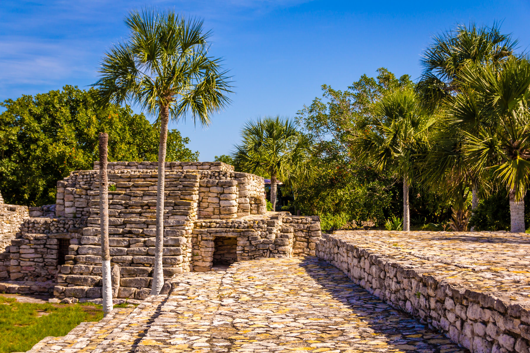 The Mayan ruins of Xcambo rise from the forests of Mexico's Yucatan Peninsula.