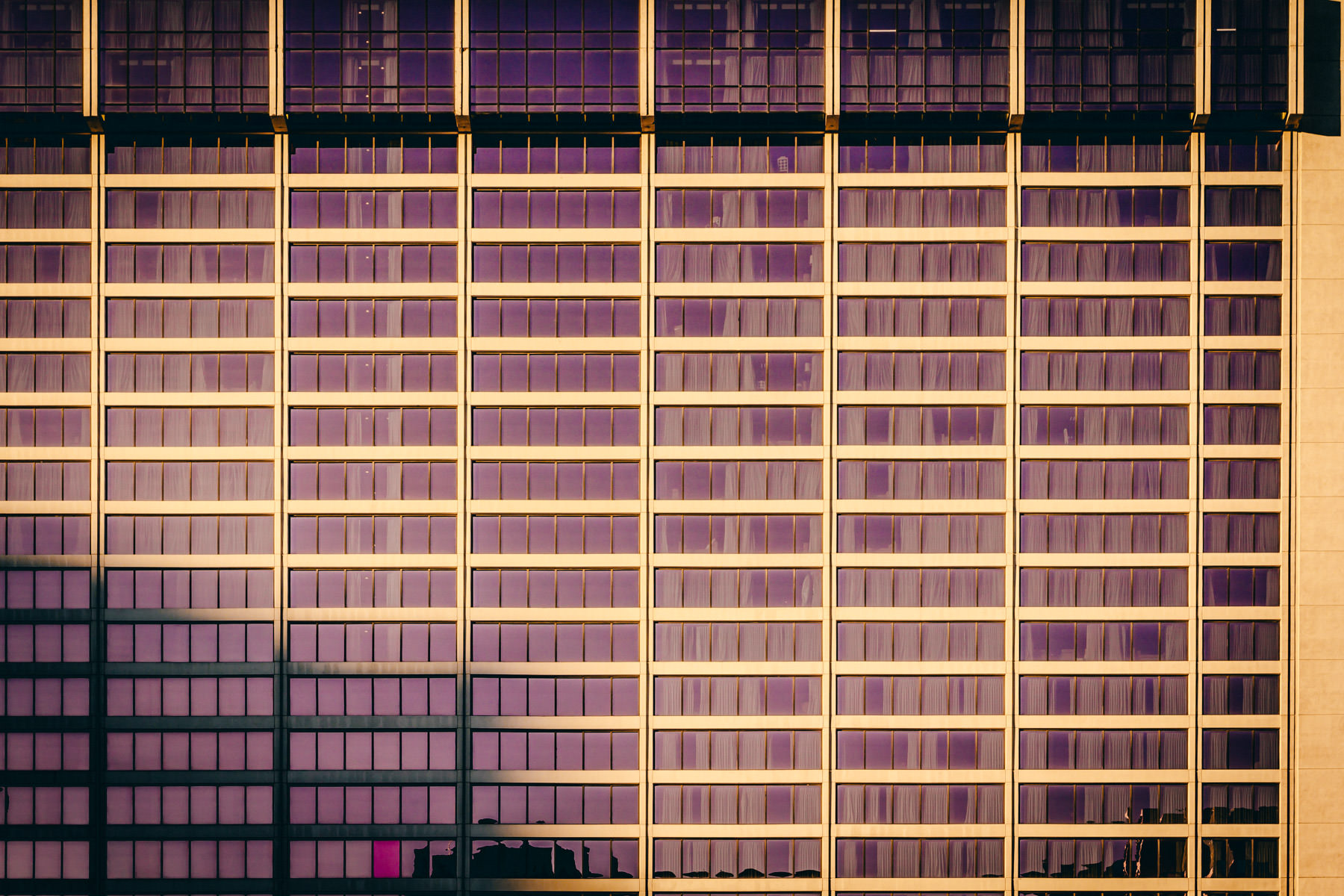 Pink/purple-tinted windows on the façade of Las Vegas' Flamingo Hotel & Casino.
