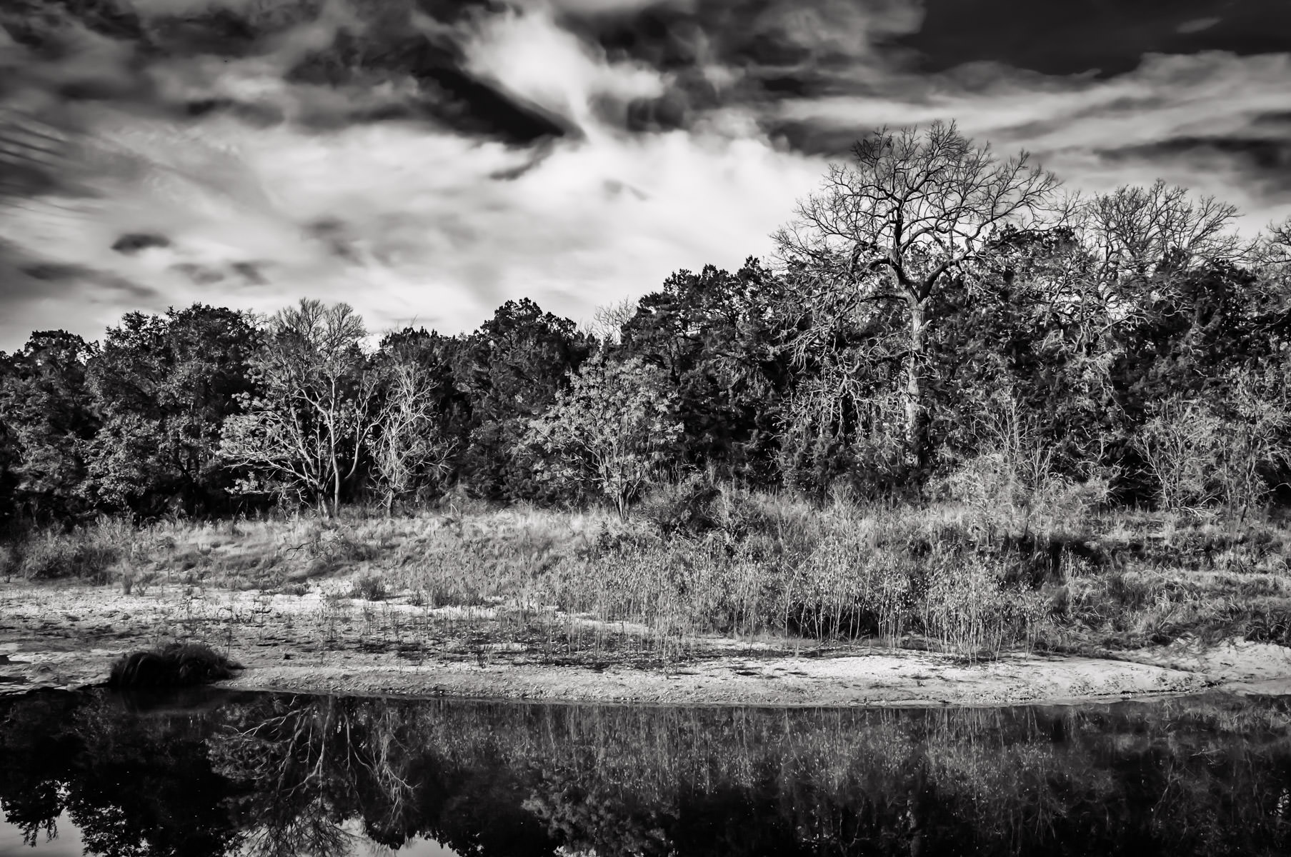 Trees grow along the shore of the Paluxy River in Texas' Dinosaur Valley State Park.
