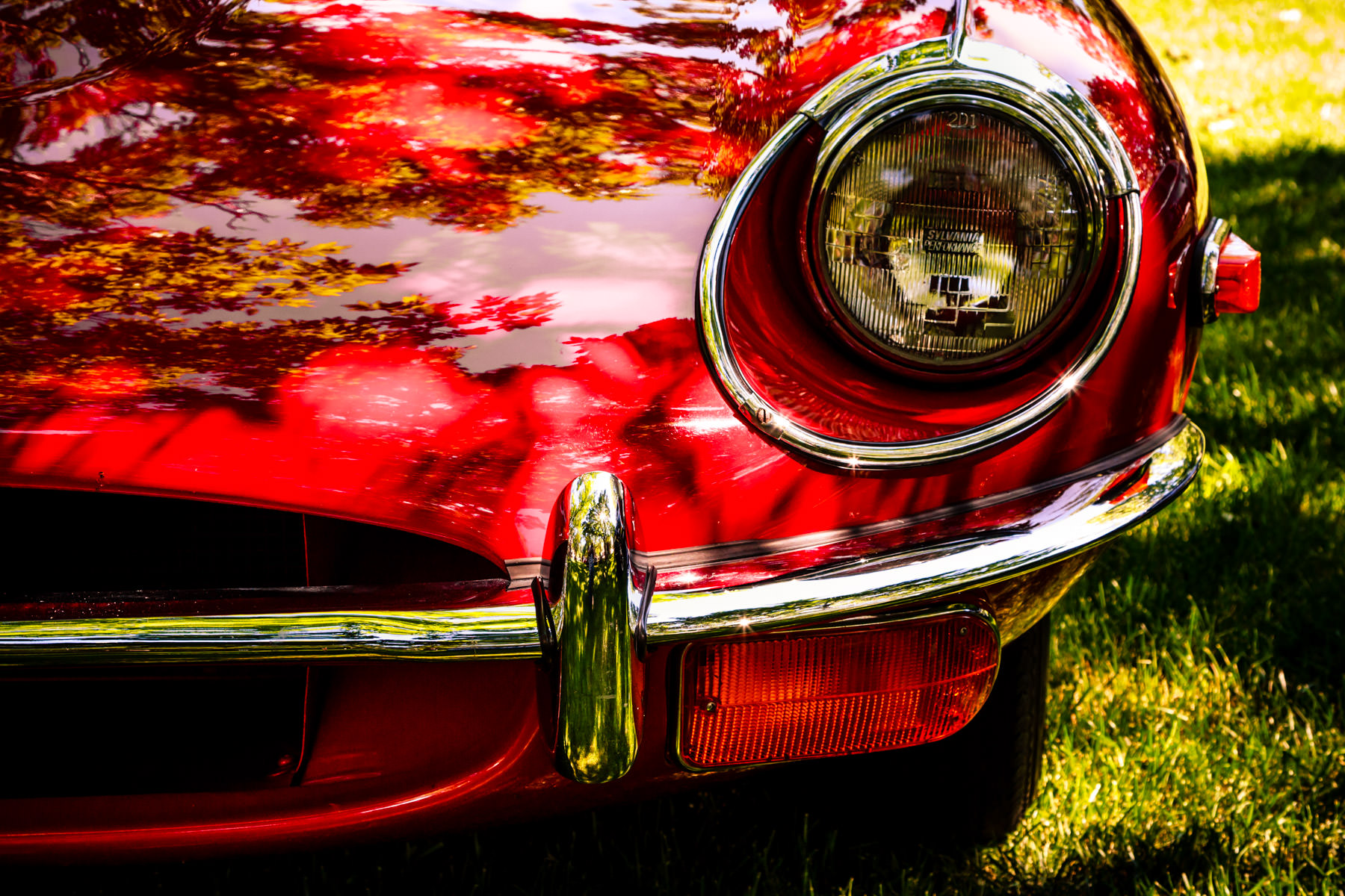 The headlight of a classic Jaguar E-Type, spotted at the Autos in the Park event in Dallas.
