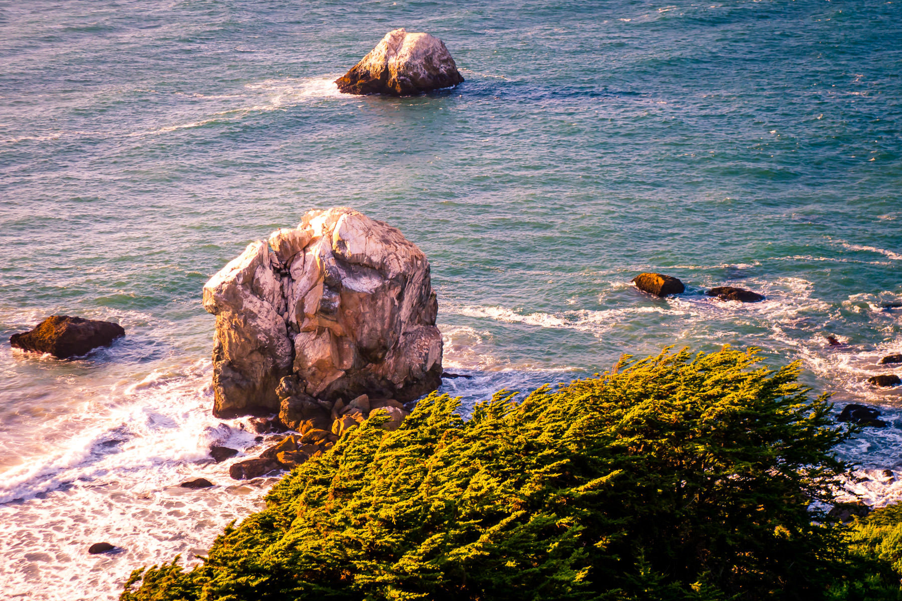 Trees growing on nearby cliffs overlook rocks in the surf below at San Francisco's Lands End.