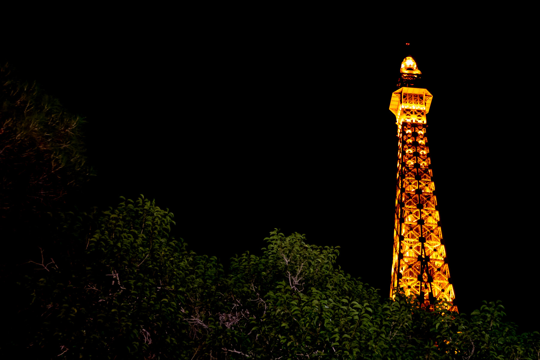 The replica Eiffel Tower at Paris Las Vegas rises above some nearby trees into the nighttime Nevada sky.