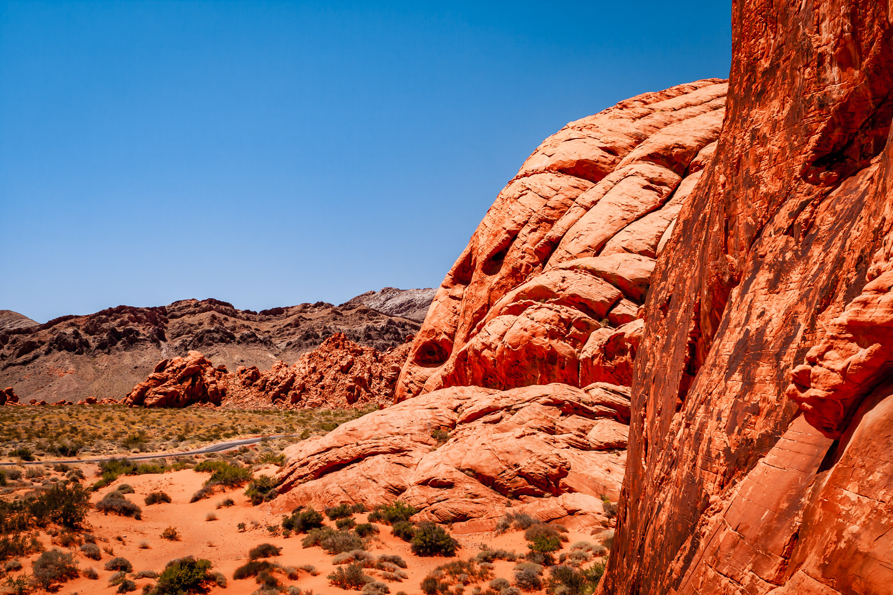 The parched landscape of Nevada's Valley of Fire State Park.