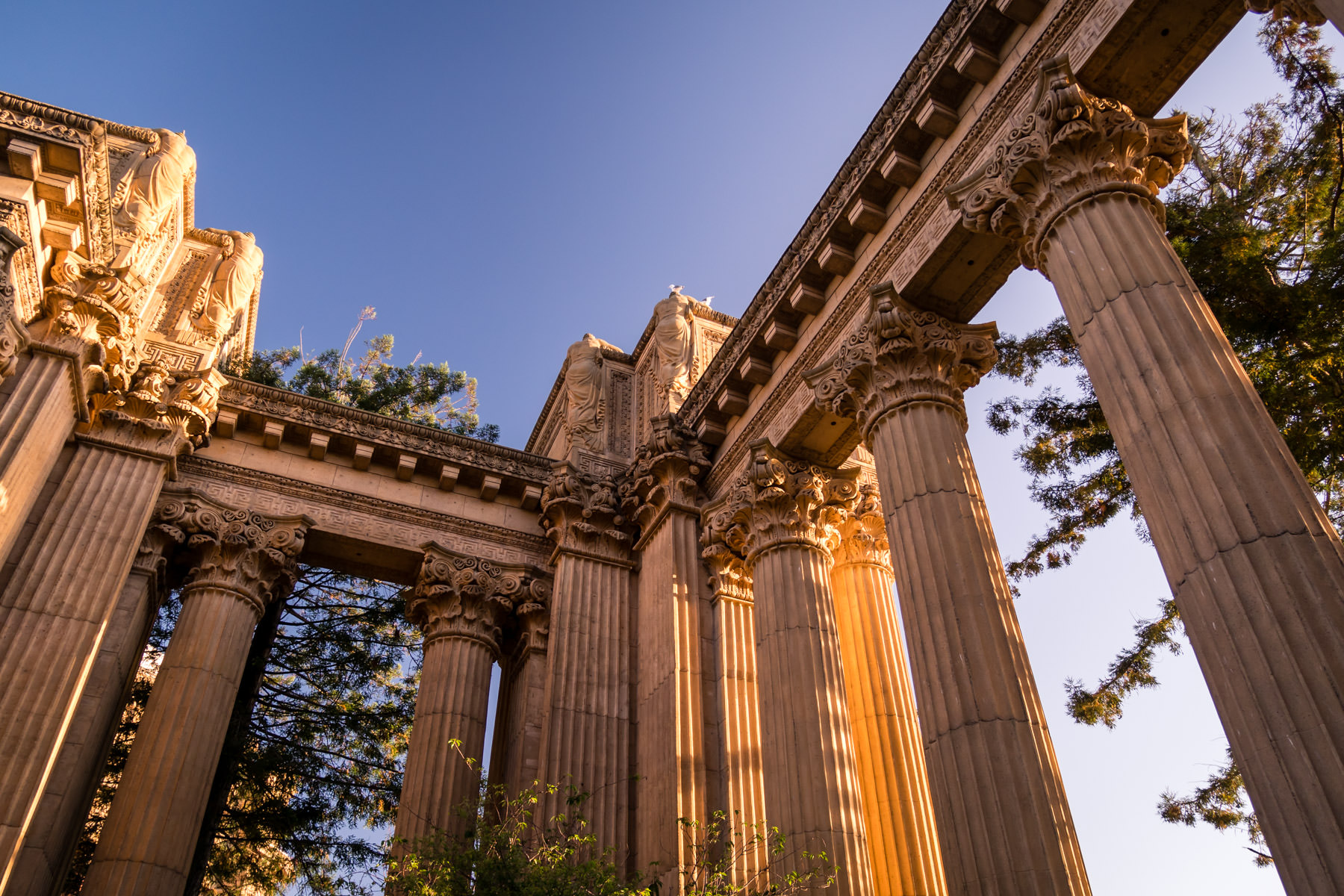 The morning sun illuminates columns at San Francisco's Palace of Fine Arts.