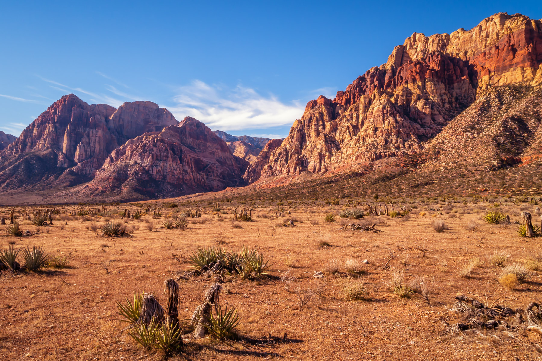 The rugged, arid landscape of Nevada's Red Rock Canyon stretches into the distance.