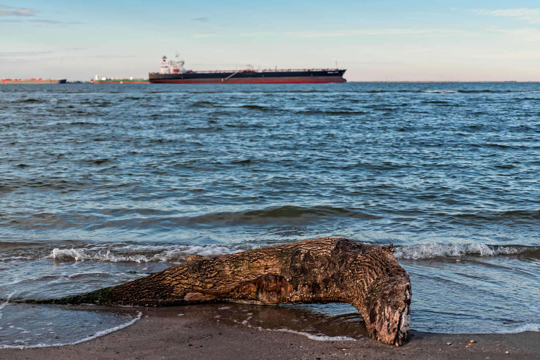 Waves lap against a piece of driftwood washed ashore a beach on the north end of Galveston Island, Texas, as ships transit Bolivar Roads in the background.