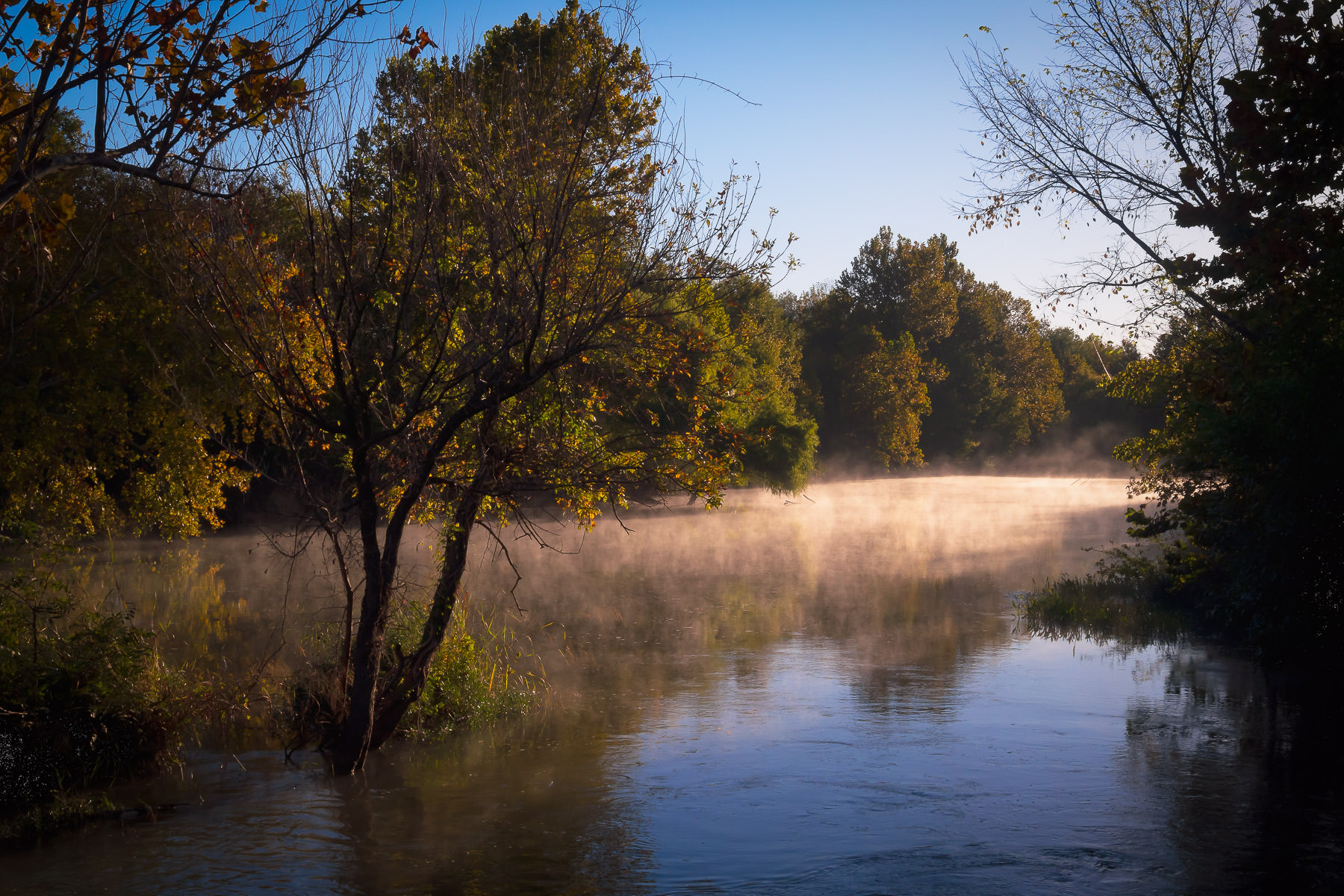 Mist is illuminated by the morning sun on a branch of Lake Worth at the Fort Worth Nature Center & Refuge, Texas.