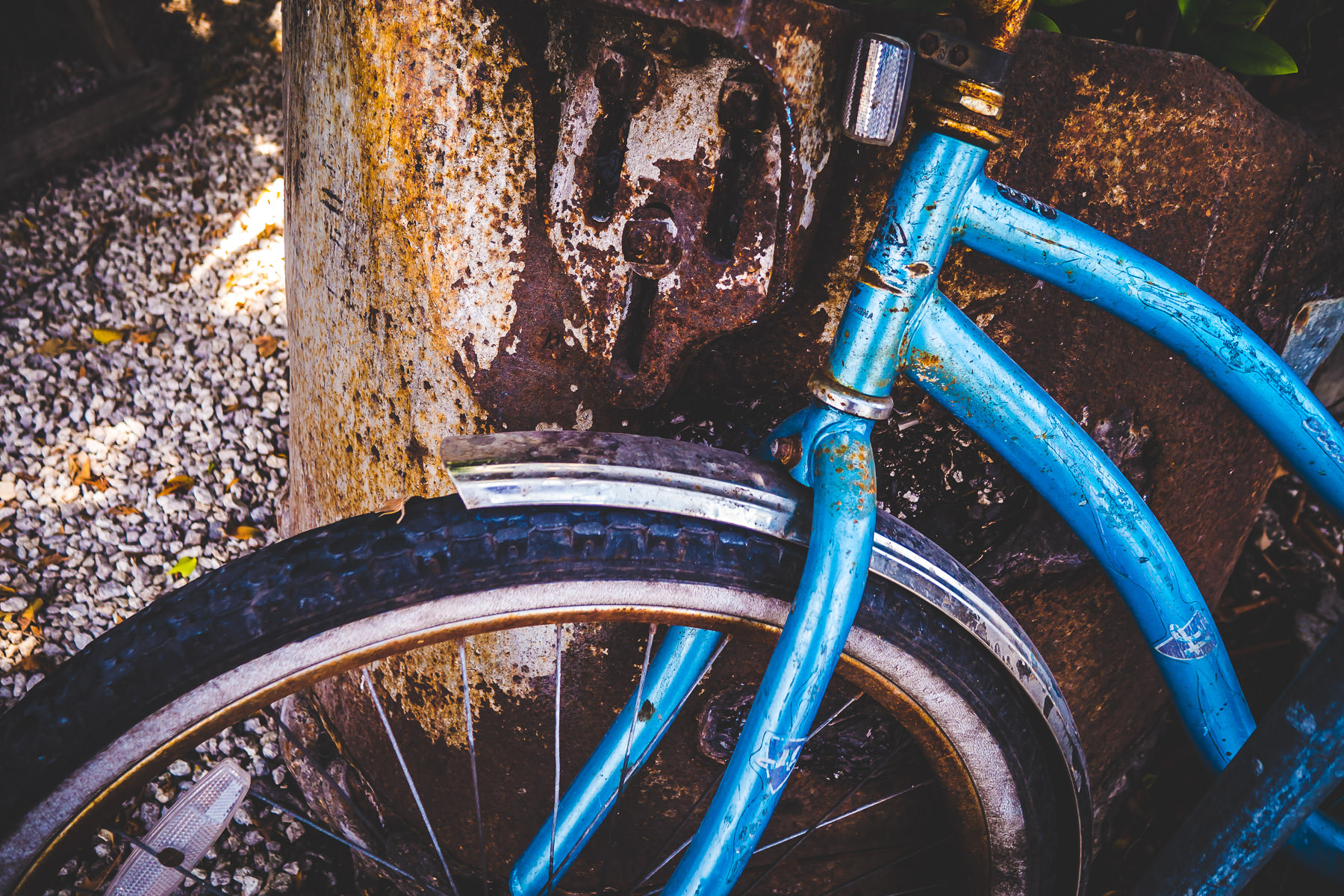A blue bicycle rusts in the Key West, Florida, humidity.