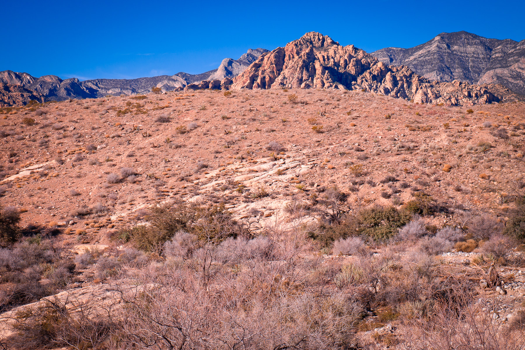 An outcropping of rocks rises in the distance among the dry desert landscape of Red Rock Canyon, Nevada.