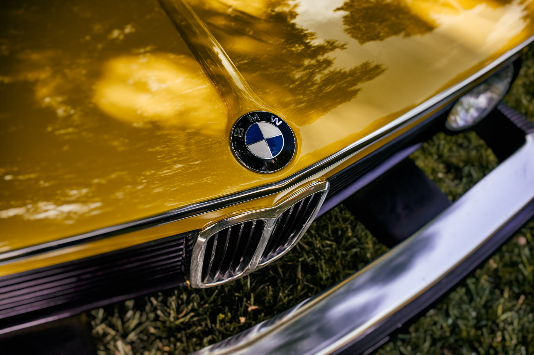 The badge of a classic BMW 2002 at the Autos in the Park event at Dallas' Cooper Aerobics Center.