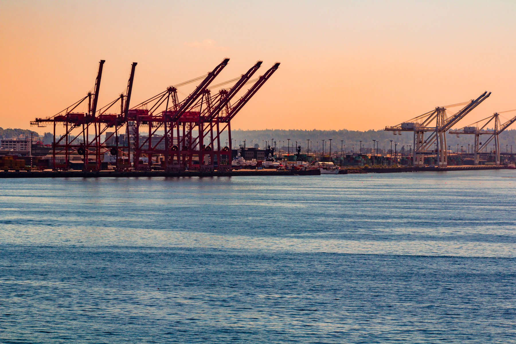 Container cranes backlit by the late afternoon sun at the Port of Seattle.
