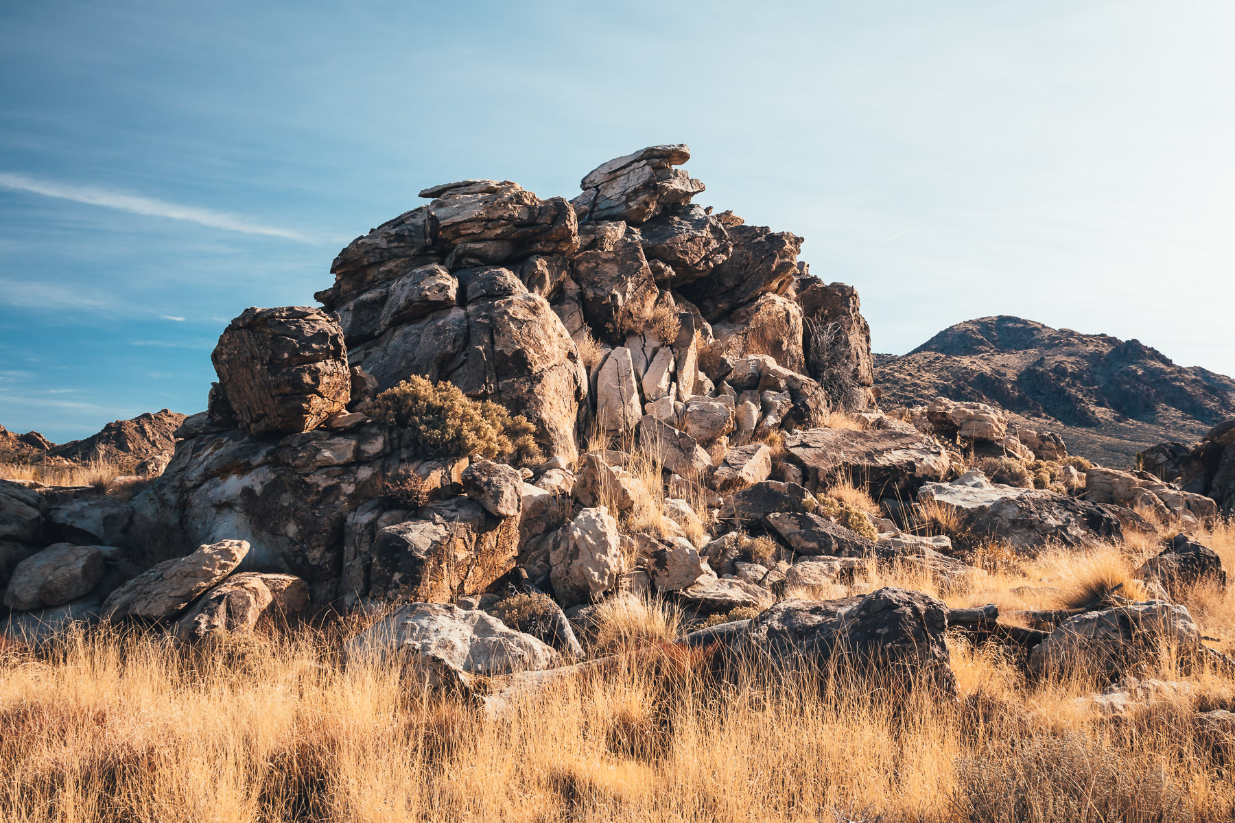 An outcropping of rocks rises amongst the tall desert grass at the Mojave National Preserve, California.