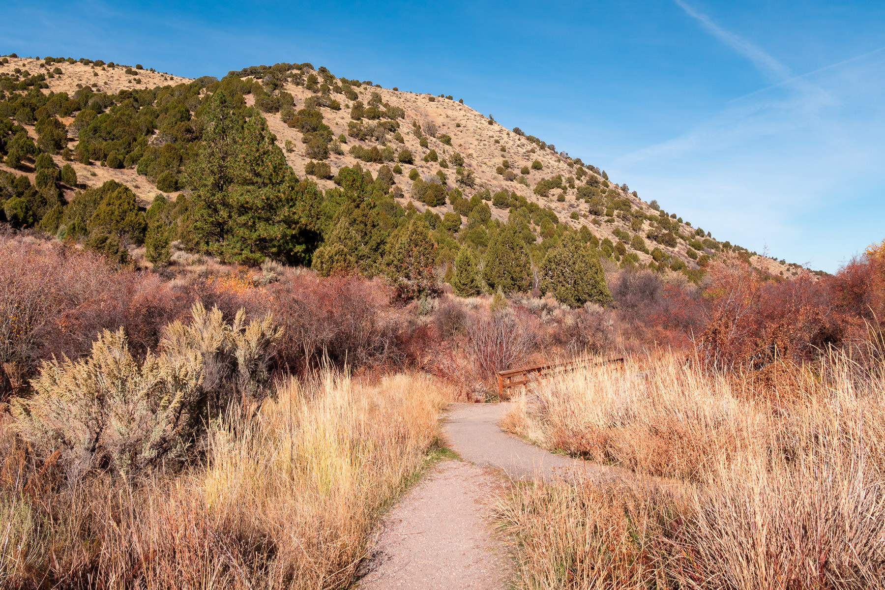 Two paths join to cross a bridge in the Cherry Springs Nature Area near Pocatello, Idaho.