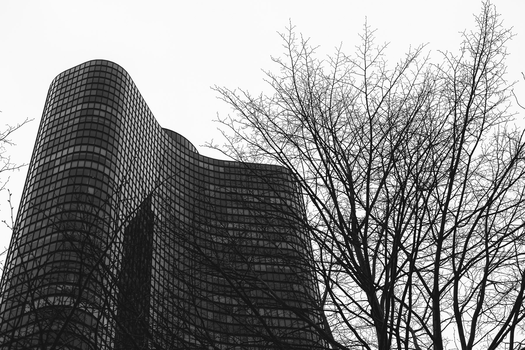 Lake Point Tower rises over barren wintry trees into the Chicago sky.